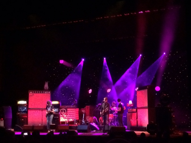 Ryan Adams and his awesome stage cat.